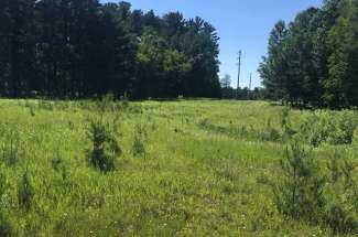 Land 3174 County 5 NW