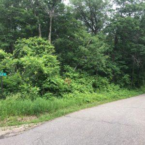 Leech Lake Access Lot – XXX Pine Point Cir NW